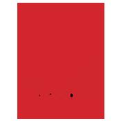 Arcoy Logo